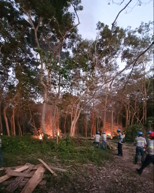 Usurpadores de terrenos amenazan con incendiar planta con depósitos de gas propano en San Marcos imagen
