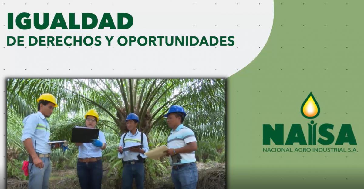 NAISA genera desarrollo bajo igualdad de derechos y oportunidades imagen
