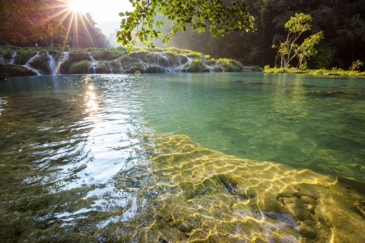 Las Verapaces y sus bosques  milenarios, son hogar del Quetzal y de La Monja Blanca imagen