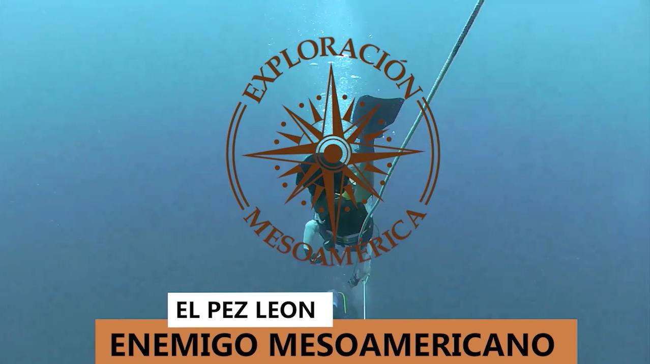 """""""El Pez León, amenaza de los arrecifes mesoamericanos"""" imagen"""