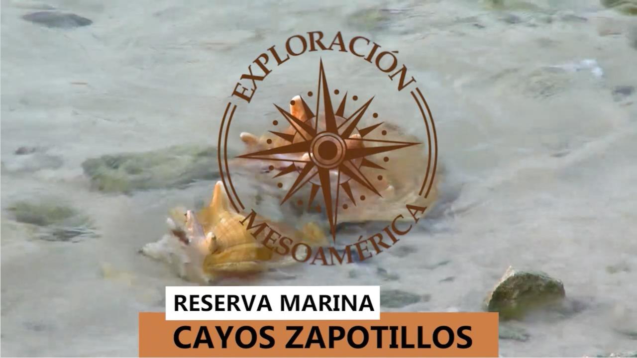 Los cayos Zapotillos tiene la suerte de experimentar un ambiente libre de pesca ilegal imagen