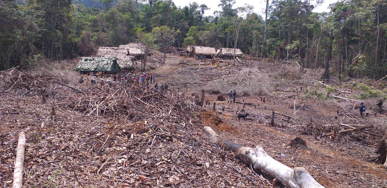 Izabal: una guerra por el agua y el medio ambiente a punto de  estallar imagen