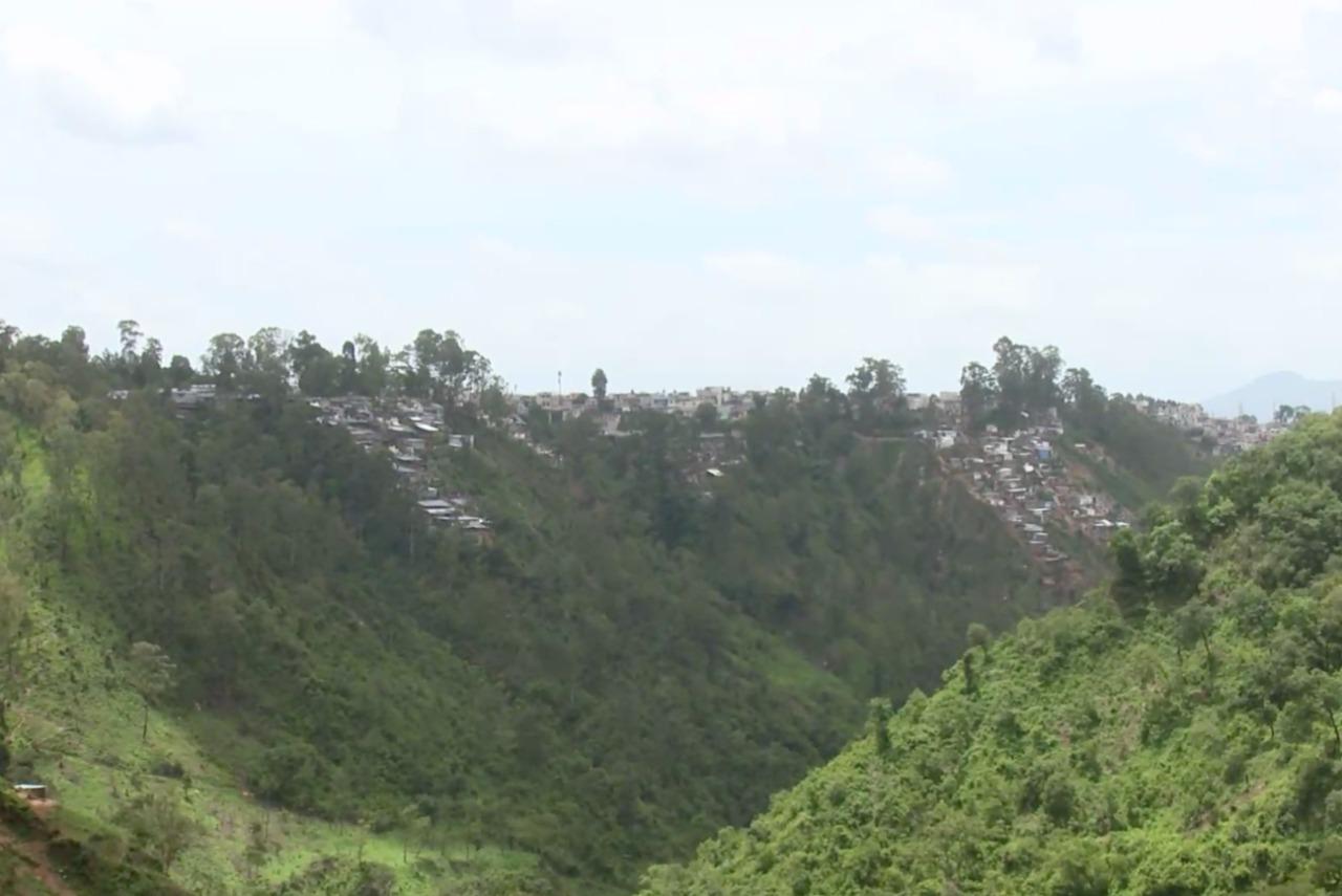 Los barrancos en la ciudad de Guatemala se han convertido en refugio de vida silvestre imagen